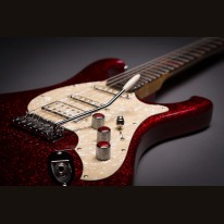 Bassart Guitars Barracuda