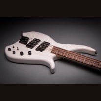 Bassart Guitars Amazing Fanned 4 String