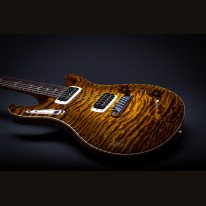 PRS Privat Stock Paul's Guitar # 5281